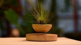 Magnetic Floating Plant Pot